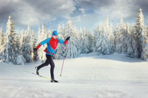 The Cross-country Skier in winter forest